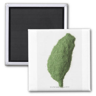 Map of Taiwan made of grass Square Magnet