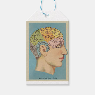 Map of the brain gift tags