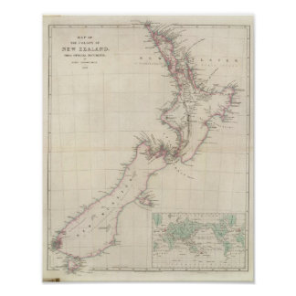 Map of the Colony of New Zealand Poster
