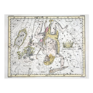Map of The Constellations Plate VIII Postcard