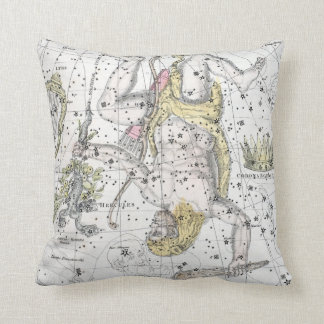 Map of The Constellations Plate VIII Throw Pillow