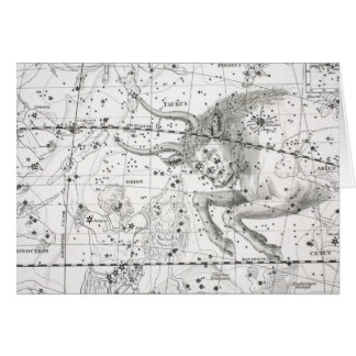 Map of The Constellations Plate XIV Card