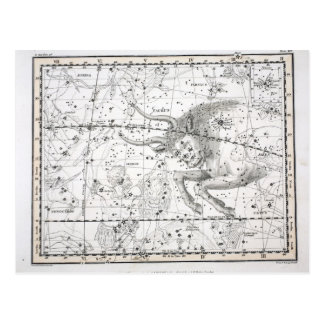 Map of The Constellations Plate XIV Postcard