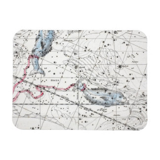 Map of The Constellations Plate XXII Magnet