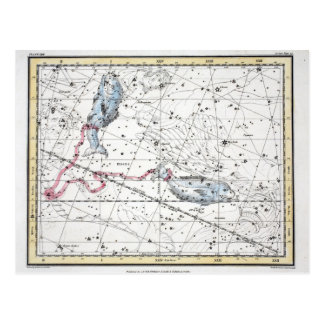 Map of The Constellations Plate XXII Postcard