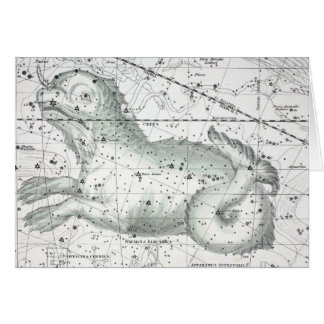 Map of The Constellations Plate XXIII Card