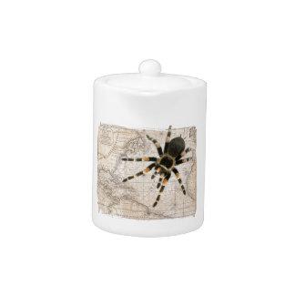 map spider