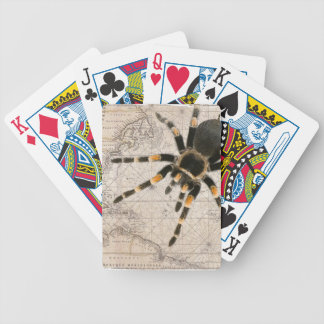 map spider bicycle playing cards