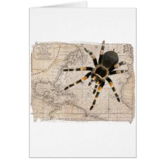 map spider card