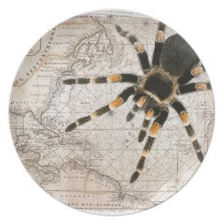 map spider dinner plate