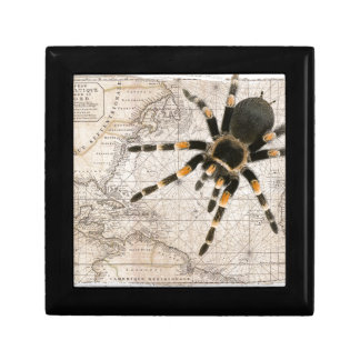 map spider keepsake boxes