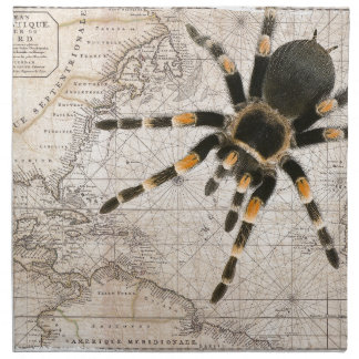 map spider napkin
