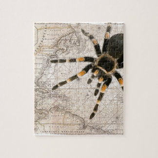 map spider puzzle