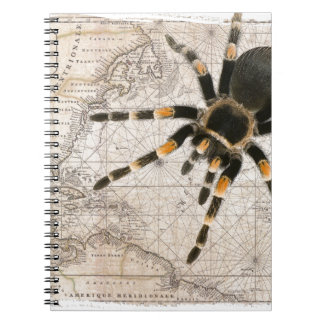 map spider spiral note books