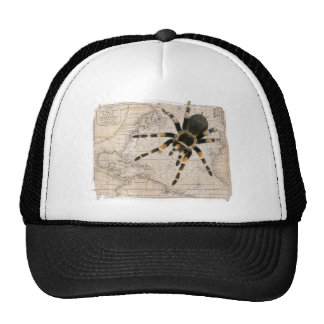 map spider trucker hat