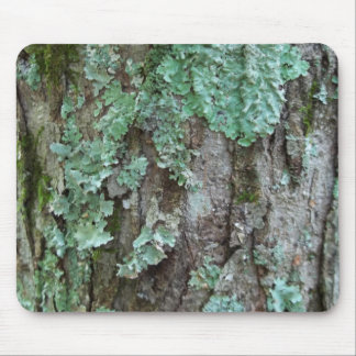 Maple Bark Mouse Pad