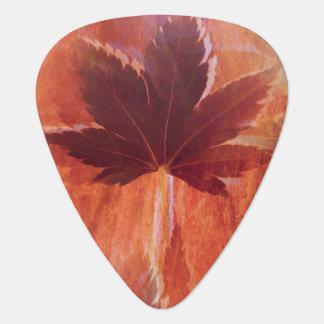 Maple Dream Guitar Pick