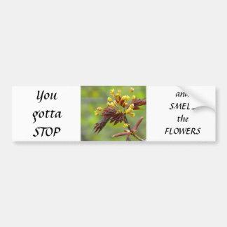 Maple Flowers Bumper Sticker