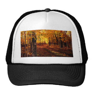 Maple Forest Fall Colour Trucker Hat