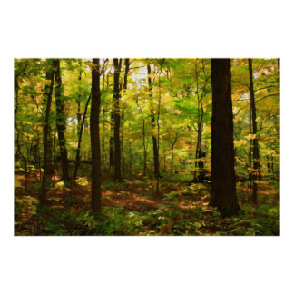 """""""Maple Forest"""" Poster"""