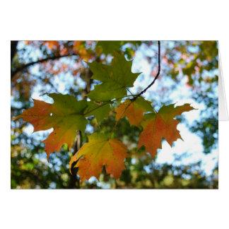 Maple Leaf blank card