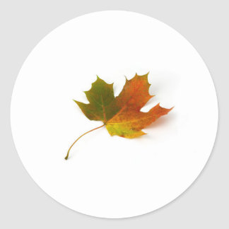 maple leaf classic round sticker