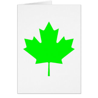 Maple Leaf Green LtTransp The MUSEUM Zazzle Gifts Greeting Cards