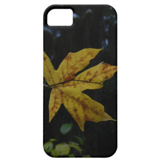 Maple Leaf in Air Case For The iPhone 5