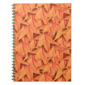maple leaf in the autumn notebooks