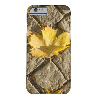 maple leaf iPhone6 case Barely There iPhone 6 Case