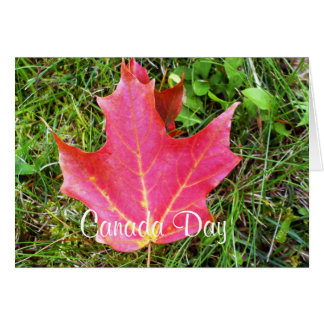Maple Leaf on Grass Note Card-Canada Day Card