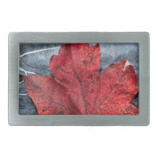 Maple leaf on ice belt buckle