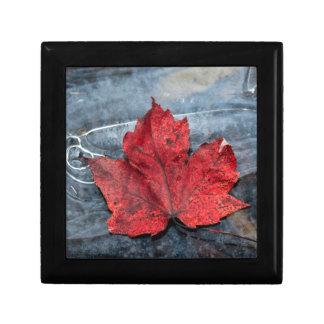 Maple leaf on ice gift box