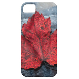 Maple leaf on ice iPhone 5 case