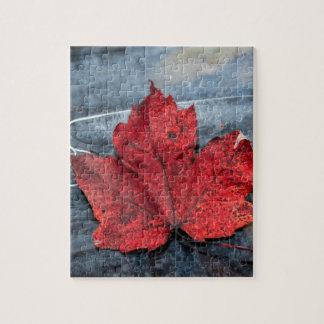 Maple leaf on ice jigsaw puzzle