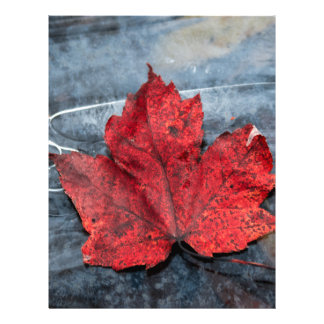 Maple leaf on ice letterhead
