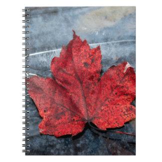 Maple leaf on ice notebook