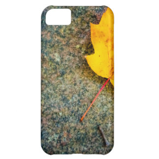 Maple Leaf on Rock Case For iPhone 5C