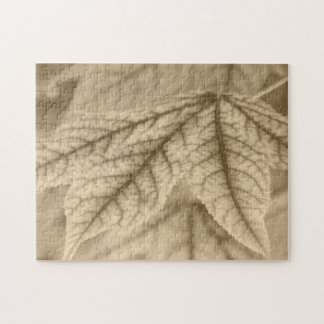 Maple Leaf Vein Patterns Puzzles