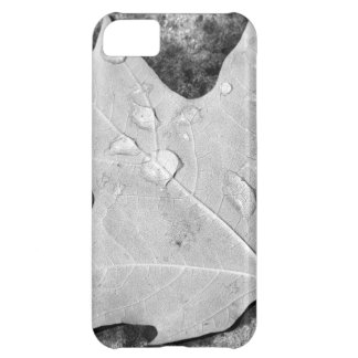 Maple Leaf with Water Droplets iPhone 5C Cover