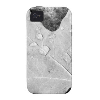 Maple Leaf with Water Droplets iPhone 4 Cases
