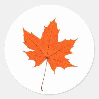 Maple Leave Classic Round Sticker