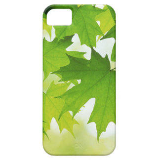 Maple leave iPhone case iPhone 5 Cover