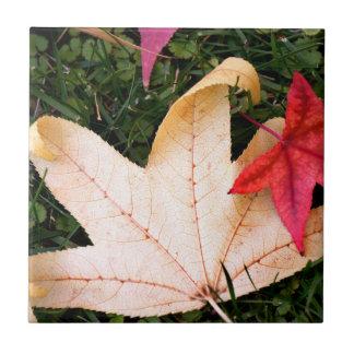 Maple Leaves Ceramic Tiles