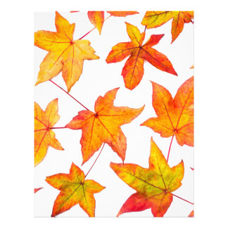 Maple leaves in autumn colors customized letterhead