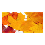 Maple leaves personalized photo card