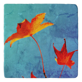 Maple Leaves Trivet