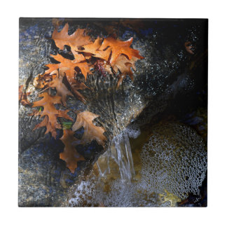 Maple Leaves, Waterfall Tile