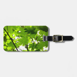 Maple Leaves with Raindrops Bag Tag
