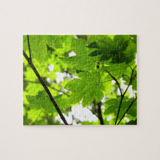 Maple Leaves with Raindrops Jigsaw Puzzle